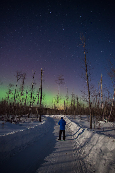 """SATURDAY, FEBRUARY 8, 2014<br /> <br /> AURORA 0540<br /> <br /> """"Soft Glow Aurora - Northern Minnesota Logging Road""""<br /> <br /> Last night was the first time in a while where it looked promising to see some aurora activity for our area.  So, my friend Roger (who is up visiting for the weekend) and I went out in search of the lights.  Indeed the lights were out, but they were only a soft glow on the horizon.  It was a nice accent to the beauty of the moonlit sky.  The moon was fairly low in the western sky which made for nice shadows from the trees and snowbanks.  All in all it was an extraordinary night even though the lights were just a faint glow.  Thankfully there was very little wind last night as the temperature was 11 degrees below zero.  Below zero temps seem to be the norm this year... when we get temps back up in the 20's it really is going to feel like a heat wave!<br /> <br /> Camera: Canon EOS 5D Mark II<br /> Lens: Canon EF 17-40mm<br /> Focal length: 17mm<br /> Shutter speed: 30 seconds<br /> Aperture: f/4<br /> ISO: 1600"""