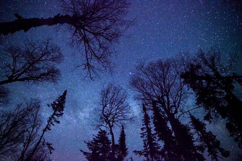 """MONDAY, JUNE 2, 2014<br /> <br /> MILKY WAY 5947<br /> <br /> """"Forest View of the Milky Way""""<br /> <br /> I've decided to start off the month of June with another shot of the Milky Way Galaxy.  What can I say, I've been on a Milky Way """"kick"""" lately!  As you probably know, the night sky is one of my favorite photographic subjects so naturally you should expect frequent shots of the night sky from me :-)  This one was captured in the thick forest of Hat Point in Grand Portage, MN.  For years this particular spot was so heavily forested you could barely see the night sky.  In the past few years, however, several of the trees here have been blown down by wind storms.  The blow-down has opened up a very nice view of the night sky!  I really liked the way the trees lined up for this shot.  I made this image before the leaves came out and arguably this shot would not work as well now that the leaves are out.  We have had a lot of clouds and rain over the past couple of days with at least two more days before the weather clears (according to the forecast, anyway).  I'm looking forward to some clear skies again so I can get out and capture more images like this one!<br /> <br /> Camera: Canon EOS 5D Mark II<br /> Lens: Canon EF 17-40mm<br /> Focal length: 17mm<br /> Shutter speed: 30 seconds<br /> Aperture: f/4<br /> ISO: 6400"""