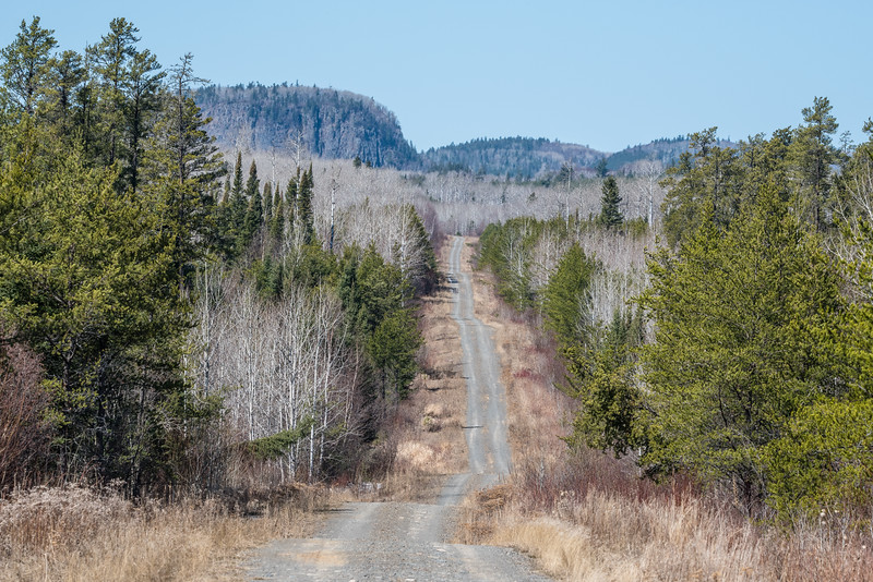 "WEDNESDAY, APRIL 15, 2015<br /> <br /> ONTARIO 4009<br /> <br /> ""Somewhere Over the Border""<br /> <br /> I spent some time today exploring the backroads on the Canadian side of the border and came across this beauty of a drive.  I can't wait to get my bike on this road!  It's gonna be a sweet ride.<br /> <br /> Camera: Nikon D750<br /> Lens: Tamron SP 150-600mm<br /> Focal length: 250mm<br /> Shutter speed: 1/400<br /> Aperture: f/16<br /> ISO: 400"