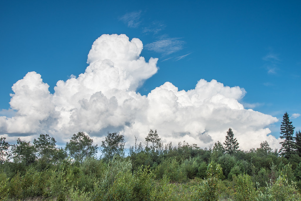 "SATURDAY, AUGUST 15, 2015<br /> <br /> CLOUDS 8568<br /> <br /> ""Marching On""<br /> <br /> A storm cloud from earlier this week that was steadily progressing from northwest to southeast across Grand Portage State Forest in northeast Minnesota.  It was a fascinating day for photography as the clouds were constantly changing and thunderstorms were coming and going.  Everywhere we stopped we were staring at the sky, watching the changing shapes of the clouds.  This particular cloud marched very slowly across the sky; so slowly that you could barely see it moving with the naked eye.  I knew it was changing, though, so I also decided to shoot a timelapse of it.  For now, enjoy this still photograph of what I found to be a most interesting cloud formation!<br /> <br /> Camera: Nikon D750<br /> Lens: Nikon 24-120mm f/4<br /> Focal length: 35mm<br /> Shutter speed: 1/320<br /> Aperture: f/11<br /> ISO: 100"
