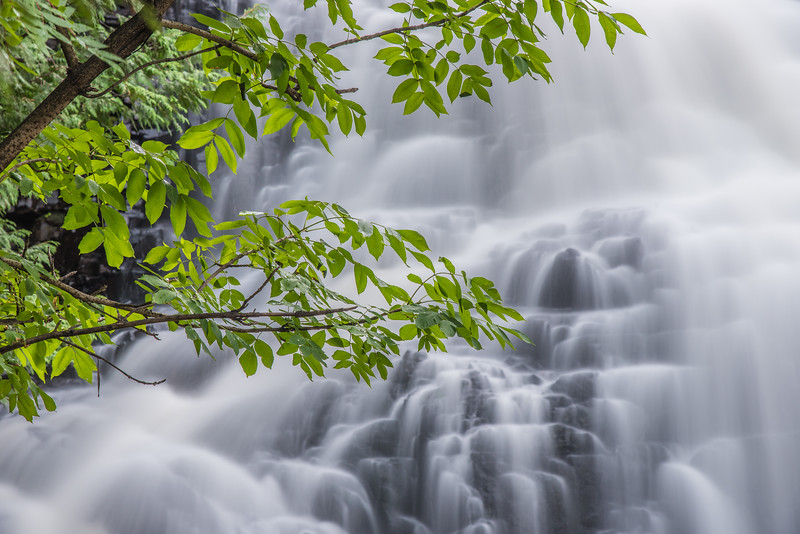 """FRIDAY, AUGUST 14, 2015<br /> <br /> PIGEON RIVER 8300<br /> <br /> """"Waterfall Paradise""""<br /> <br /> Many of the waterfalls in the Minnesota portion of the Lake Superior watershed are at a really nice level right now for photography.  A beautiful waterfall is definitely one of the most rewarding subjects you can point your camera at.  I have photographed this scene the same way during the fall color season but it's the first time I've done so when the leaves are green.  It's hard to say which one I like more, the one with green leaves or the one with orange/yellow leaves.  Both of them are beautiful.  If you haven't done so lately, go for a hike and enjoy a waterfall.  I guarantee you won't regret it!<br /> <br /> Camera: Nikon D750<br /> Lens: Nikon 24-120mm f/4<br /> Focal length: 92mm<br /> Shutter speed: 8 seconds<br /> Aperture: f/11<br /> ISO: 200"""
