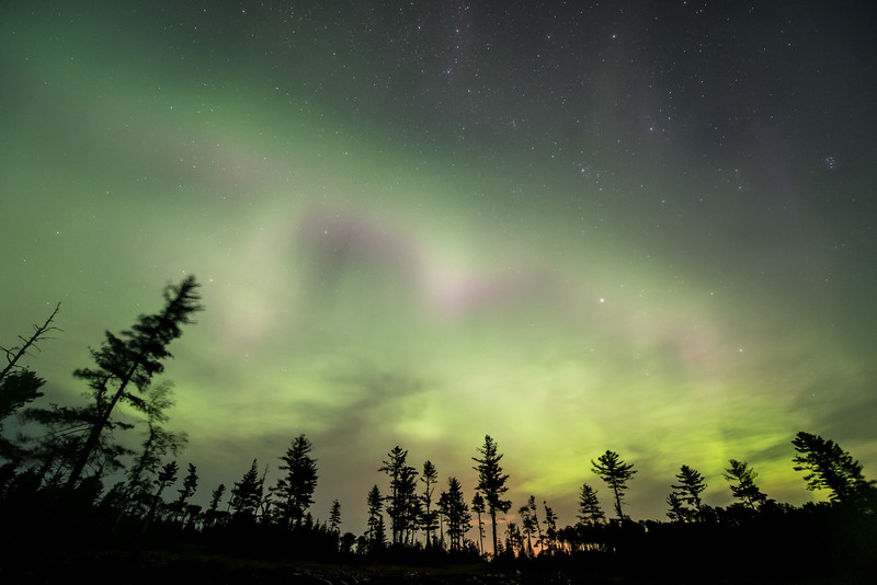 "SUNDAY, AUGUST 16, 2015<br /> <br /> AURORA 8788<br /> <br /> ""Aurora in the Pines""<br /> <br /> We had a nice showing of the northern lights last night!  Actually, a big geomagnetic storm sparked in the morning and luckily for us it lasted not only until night-time but throughout most of the night as well!  I've had my eye on the tree line shown in this photo for a while.  I knew once I found it that it would be a great place for watching/photographing the aurora.  Last night I finally was able to capture some lights above the trees :-)<br /> <br /> Camera: Nikon D750<br /> Lens: Nikon 14-24mm f/2.8<br /> Focal length: 14mm<br /> Shutter speed: 15 seconds<br /> Aperture: f/2.8<br /> ISO: 1600"