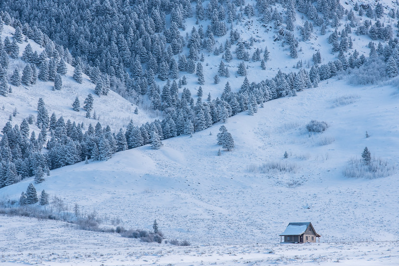 "WEDNESDAY, DECEMBER 9, 2015<br /> <br /> MONTANA 4691<br /> <br /> ""The little cabin in the mountains""<br /> <br /> A tranquil mountain scene near West Yellowstone, Montana.<br /> <br /> Camera: Nikon D750<br /> Lens: Nikon 300mm f/4 PF<br /> Focal length: 300mm<br /> Shutter speed: 1/800<br /> Aperture: f/11<br /> ISO: 800"