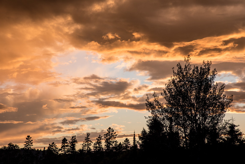 "SATURDAY, JULY 25, 2015<br /> <br /> FOREST 7321<br /> <br /> ""Golden July Sunset""<br /> <br /> Here is another photo of last night's sunset, this one taken from the road in front of our house.  The colors and shapes within the clouds were unreal.  One of the best sunsets of the summer, that's for sure!<br /> <br /> Camera: Nikon D750<br /> Lens: Nikon 24-120mm f/4<br /> Focal length: 105mm<br /> Shutter speed: 1/200<br /> Aperture: f/11<br /> ISO: 200"
