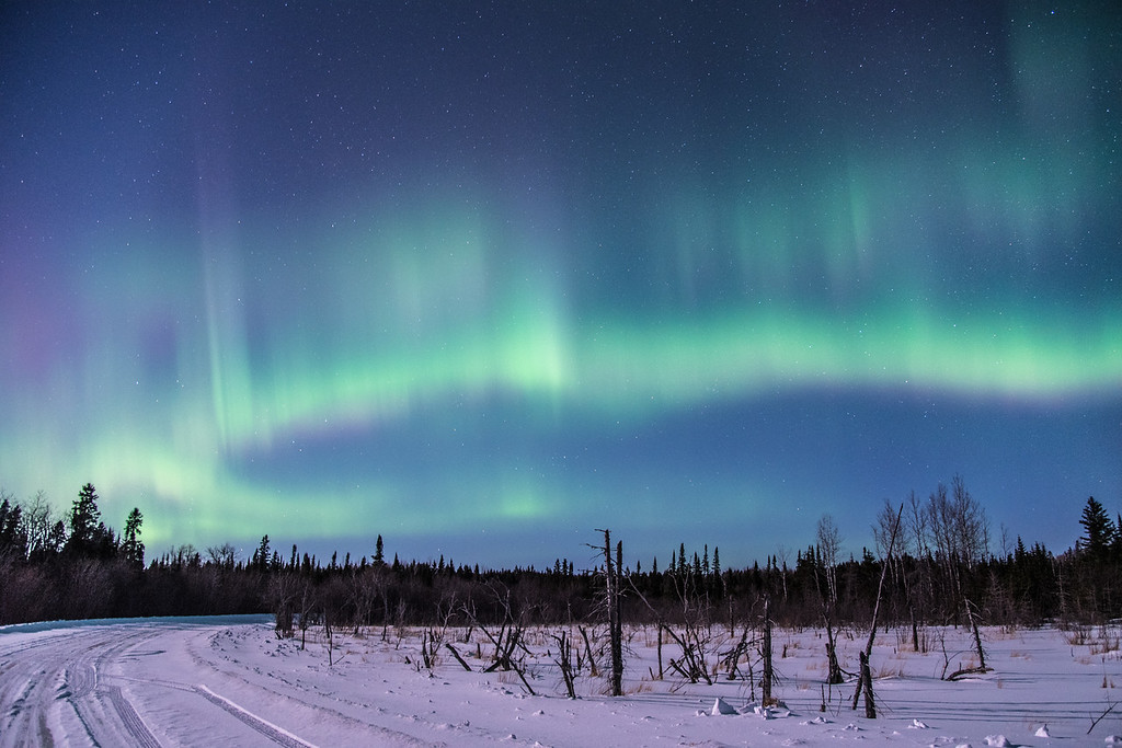"MONDAY, MARCH 2, 2015<br /> <br /> AURORA 0336<br /> <br /> ""3 A.M. Surprise""<br /> <br /> Last night was pretty sweet for northern lights!  It was the 3rd night in a row that promised some aurora activity, but the first night that we had good enough sky conditions to actually see the lights.  I headed out around midnight and met up with a friend to do some shooting.  At first the lights were there, but they were really faint.  After a while we noticed an increase in activity and we started to get some nice results in our images.  It wasn't until just before 3:00 AM, however, that the lights really picked up.  It was around 2:00 when my friend went home; we figured the activity was pretty much done at that point as we hadn't seen much happen in the previous 45 minutes.  I decided to stay a little while longer and I sure am glad that I did!  These were far from the strongest lights that I've seen, but they were very good.  And they most likely would have looked better if we hadn't had the light of a half-moon to contend with.  Even with the moonlight, the lights shone through and filled the sky with their beauty.  It sure was an awesome night!<br /> <br /> Camera: Nikon D750<br /> Lens: Nikon 24-120mm f/4<br /> Focal length: 24mm<br /> Shutter speed: 8 seconds<br /> Aperture: f/4<br /> ISO: 1600"