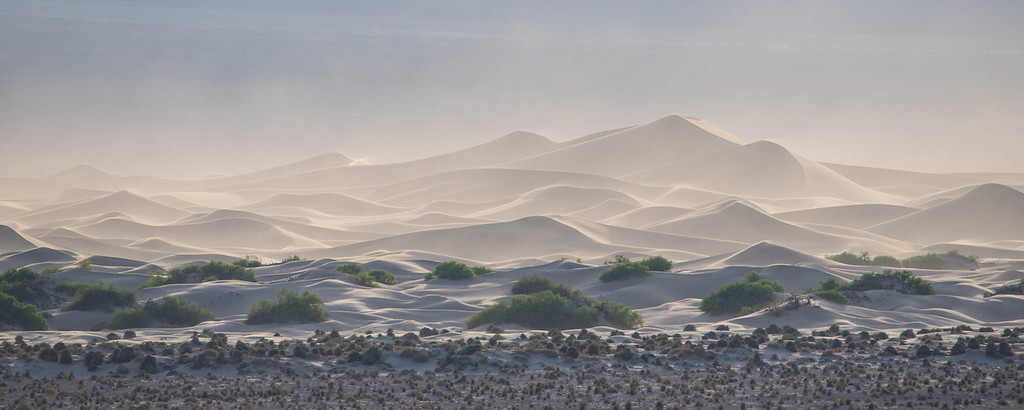 "TUESDAY, MARCH 24, 2015<br /> <br /> CALIFORNIA 1617<br /> <br /> ""Mesquite Flat Dunes""<br /> <br /> One of the locations in Death Valley that I was hoping to see and photograph was the Mesquite Flat Dunes.  I had seen enough photos of the dunes that I knew it was an area I wanted to see for myself.  We decided to try sunset at the dunes which probably wasn't the best idea because it was pretty windy and there were a ton of people there.  Sunrise was out, however, as we were planning on Zabriskie Point for that.  <br /> <br /> As we were driving towards the dunes from the Furnace Creek Campground, there were beautiful yellow flowers all along both sides of the highway.  The spring bloom was just beginning.  Soon the dunes became visible down in the valley even though we were still several miles away.  Our first glimpse of the dunes was like something from a dream.  The wind and early evening light made the dunes look irresistible. We simply had to pull over so I could make this image.  This was taken from the side of the highway 3 or 4 miles away from the dunes using my Tamron 150-600 lens zoomed all the way out to 600mm.<br /> <br /> Camera: Nikon D750<br /> Lens: Tamron SP 150-600mm<br /> Focal length: 600mm<br /> Shutter speed: 1/1000<br /> Aperture: f/11<br /> ISO: 800"