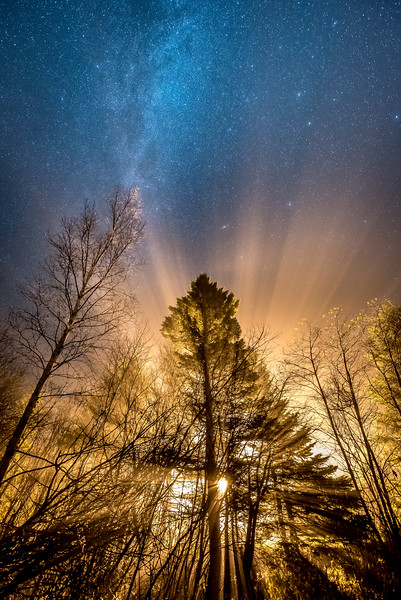 "SUNDAY, NOVEMBER 8, 2015<br /> <br /> MILKY WAY 4122<br /> <br /> ""Foggy Night under the Milky Way""<br /> <br /> Last week we had a lot of rainy weather and a lot of fog, which made for some pretty cool photo opportunities!  Especially after dark one evening when our neighbor's yard light was shining through the trees and fog.  I went out to make some photographs of the rays of light coming through the trees and while I was shooting the scene the fog started to clear out.  As the fog was dissipating I could see the stars appearing through the haze.  It only took about 5 minutes for the fog to completely burn off, so I had to work quickly in order to capture a good exposure that was as balanced as possible between the bright light on the bottom half of the photo and the dark sky above.  Using the graduated ND filter in Lightroom and the adjustment brush I was able to balance the exposure even more between the bottom and top of the photo, and bring out the brightness and detail of the stars a bit more.  I really like the end result, it's unlike anything I've ever captured before with a camera.  Definitely one of the most unique night sky photos I've captured!<br /> <br /> Camera: Nikon D750<br /> Lens: Nikon 14-24mm f/2.8<br /> Focal length: 14mm<br /> Shutter speed: 20 seconds<br /> Aperture: f/2.8<br /> ISO: 3200"