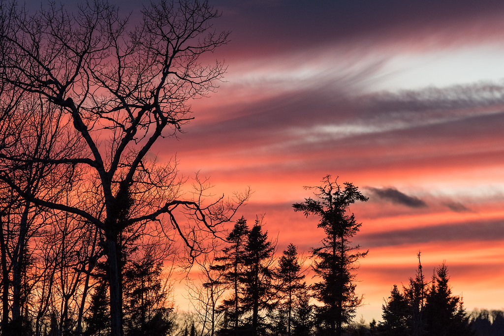 "MONDAY, NOVEMBER 2, 2015<br /> <br /> FOREST 4036<br /> <br /> ""Late Autumn Sunset""<br /> <br /> Now that all the leaves have fallen the trees make for some nice silhouettes against the sky, especially at sunset.  I captured this image a few days ago while leaving work for the day at Grand Portage State Park.<br /> <br /> Camera: Nikon D750<br /> Lens: Tamron SP 150-600mm<br /> Focal length: 320mm<br /> Shutter speed: 1/200<br /> Aperture: f/8<br /> ISO: 800"