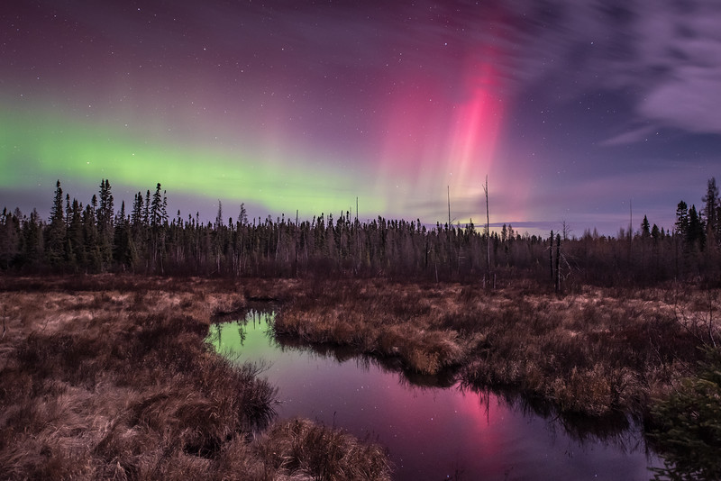 "TUESDAY, NOVEMBER 3, 2015<br /> <br /> AURORA 4206<br /> <br /> ""Plouff Creek Lights""<br /> <br /> The Aurora Borealis paints an other-worldly palette of color in the northeast Minnesota sky over Plouff Creek in the Superior National Forest.  This photo was made at 3:30 this morning.<br /> <br /> Camera: Nikon D750<br /> Lens: Nikon 14-24mm f/2.8<br /> Focal length: 14mm<br /> Shutter speed: 20 seconds<br /> Aperture: f/2.8<br /> ISO: 2500"