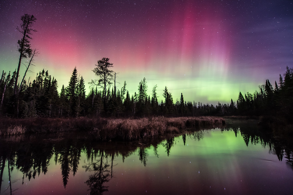 "TUESDAY, NOVEMBER 3, 2015<br /> <br /> AURORA 4170<br /> <br /> ""November Night in the Superior National Forest""<br /> <br /> Hog Creek - Superior National Forest, MN<br /> <br /> Last night was a good one for the northern lights!  I spent the entire night out photographing the lights in various locations.  Visiting multiple areas was kind of necessary due to cloud cover plaguing much of the region.  There was also heavy fog at my house when I headed out.  I was hopeful that the fog was only along the Lake Superior shoreline and it would clear up if I headed inland.  Thankfully, that plan worked!  As I drove down the shore the fog dissipated and eventually the cloud cover started breaking up as well.  I drove south to Tofte, MN and headed up the Sawbill Trail to try some new (for me) locations for photographing the aurora. <br /> <br /> I stopped at 4 different locations near the Sawbill Trail and each time I got lucky and had a clear sky long enough to make a few exposures of the lights.  After making a few images at each location the clouds moved back in and totally obscured the view of the sky, so I was off again in search of another spot with a clear view.  As I was making my circuit around the arrowhead region I saw a plethora of wildlife.  At least 40 to 50 deer (mostly along Highway 61), a dozen or more rabbits, two moose and a skunk.  It was a great night in many ways!  <br /> <br /> As is my tendency, the first image that I'm going to share from last night's adventures is my favorite.  I arrived at this location just as the lights were flaring back up after a lull in their activity.  There were a lot of reds in the colors of the lights last night, which happens from time to time but is certainly not common.  Mostly we see green and purple.  Also, the red color is not always immediately apparent to the naked eye.  I had no idea that there was this much color in the sky until I made my first photograph and saw how much red there was.  I could just barely make out the color when looking at the sky, but the camera really picks up a lot more of it.  Look for another photo to be posted later today!<br /> <br /> Camera: Nikon D750<br /> Lens: Nikon 14-24mm f/2.8<br /> Focal length: 14mm<br /> Shutter speed: 20 seconds<br /> Aperture: f/2.8<br /> ISO: 1600"