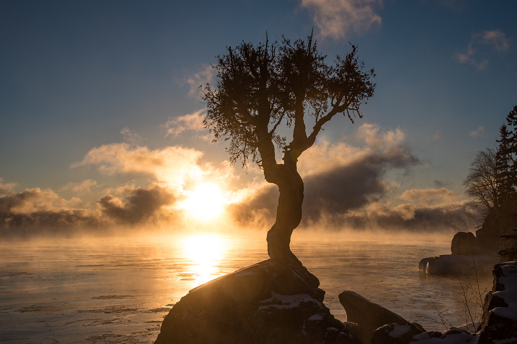 "SUNDAY, DECEMBER 18, 2016<br /> <br /> SPIRIT TREE 1866<br /> <br /> ""December morning and 13 below at the Spirit Tree""<br /> <br /> Jessica and I got out in the cold this morning to witness this beautiful, steamy sunrise over Lake Superior just minutes from our home.  Unlike the other morning when I hiked up Mt. Josephine to photograph the steam, this morning was (thankfully) very calm.  No wind to make things miserable.  We stood in awe as nature played out this scene before us.  To top it off we saw a bald eagle circling over the bay when we first arrived on the shoreline.  We couldn't ask for a better start to the day!<br /> <br /> Camera: Nikon D750<br /> Lens: Nikon 24-120mm f/4<br /> Focal length: 44mm<br /> Shutter speed: 1/500<br /> Aperture: f/11<br /> ISO: 100"