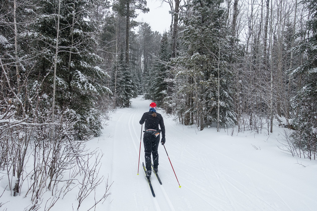 "THURSDAY, DECEMBER 29, 2016<br /> <br /> CROSS COUNTRY SKI 04648<br /> <br /> ""Skiing the Beaver Dam Trail""<br /> <br /> Yesterday we got out for a day of awesome skiing on the Central Gunflint Ski Trails.  The conditions were perfect!  The trails were (as always) very nicely groomed and there was a nice gentle snow falling all day.  It was the kind of day that made you wish you could just ski all day every day!<br /> <br /> Camera: Sony DSC-RX100M3<br /> Focal length: 24mm<br /> Shutter speed: 1/400<br /> Aperture: f/4<br /> ISO: 400"