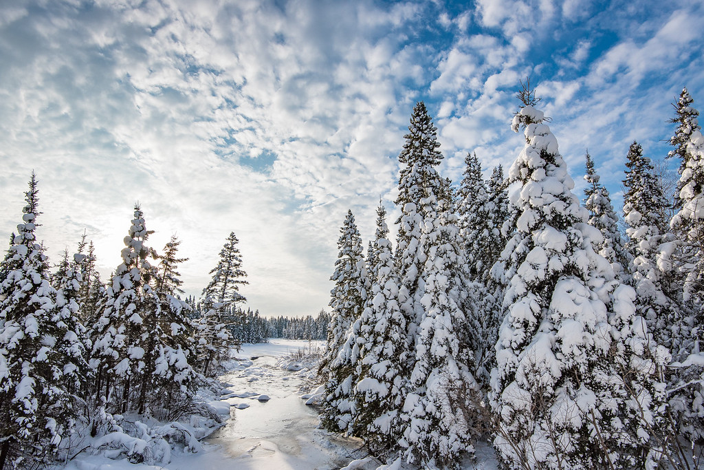 "FRIDAY, JANUARY 8, 2016<br /> <br /> FOREST 6365<br /> <br /> ""Winter Beauty - Junco Creek""<br /> <br /> A supremely beautiful winter afternoon along Junco Creek near Grand Marais, MN.<br /> <br /> Camera: Nikon D750<br /> Lens: Nikon 16-35mm f/4<br /> Focal length: 16mm<br /> Shutter speed: 1/1000<br /> Aperture: f/11<br /> ISO: 400"