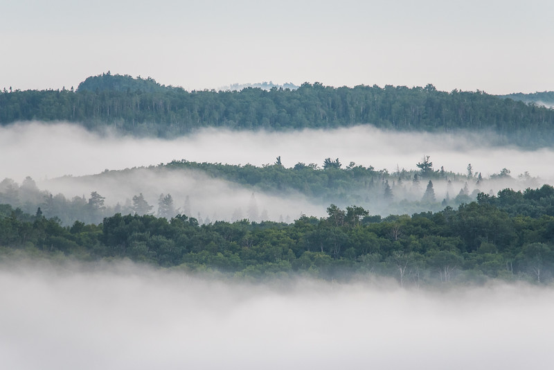 "TUESDAY, JULY 19, 2016<br /> <br /> FOREST 8909<br /> <br /> ""A Foggy Evening in the Minnesota North Woods""<br /> <br /> An evening of fog combined with the elevated vantage point of a fire tower makes for a dramatic image of a foggy evening in the forest of northeast Minnesota!<br /> <br /> Camera: Nikon D750<br /> Lens: Tamron SP 150-600mm<br /> Focal length: 600mm<br /> Shutter speed: 1/40<br /> Aperture: f/8<br /> ISO: 1600"