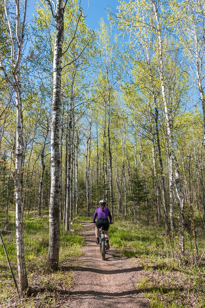 "THURSDAY, MAY 19, 2016<br /> <br /> BIKING 00312<br /> <br /> ""Singletrack Adventure on Lester River""<br /> <br /> We finally got to try out some real singletrack trails!  It sure was a big change from riding a wide variety of gravel roads, which is what we're used to.  It was challenging for both of us but lots of fun! The trails were beautiful and the amount of work that goes into building and maintaining them is nothing short of astounding.  A big thanks to COGGS (Cyclists of Gitchee Gumee Shores) for providing these awesome trails for us to ride!  This photo was taken on the Lester River Trail in Duluth, MN.<br /> <br /> Camera: Sony DSC-RX100M3<br /> Focal length: 24mm<br /> Shutter speed: 1/800<br /> Aperture: f/5<br /> ISO: 400"