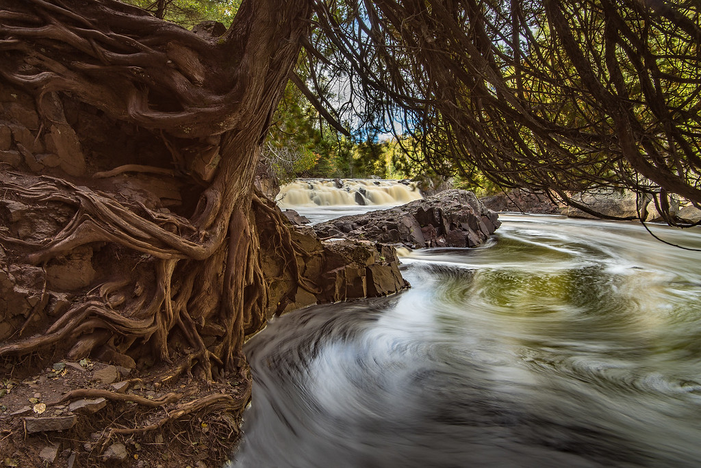"MONDAY, OCTOBER 3, 2016<br /> <br /> RIVERS 0197<br /> <br /> ""Exposed Cedar, Baptism River""<br /> <br /> I just LOVE this tree that I found recently on the Baptism River!  The exposed roots are fascinating and it's a pretty big tree; I wonder how much longer it will be able to cling to the riverbank before falling into the river.  In the background you can see Two Step Falls, a small but beautiful waterfall just a little ways downstream from High Falls.<br /> <br /> Camera: Nikon D750<br /> Lens: Nikon 16-35mm f/4<br /> Focal length: 16mm<br /> Shutter speed: 5 seconds<br /> Aperture: f/16<br /> ISO: 100"