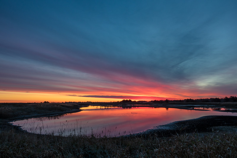 """FRIDAY, OCTOBER 28, 2016<br /> <br /> WISCONSIN 02605<br /> <br /> """"A sublime morning at Crex Meadows""""<br /> <br /> One of my favorite places to visit in the fall is Crex Meadows Wildlife Area in Grantsburg, Wisconsin.  The main reason for this is because there are a lot of Sandhill Cranes that stop here in the fall and I love cranes!  There are lots of other birds as well, but the cranes tend to steal the show.  Since Crex is a bit of a drive from Grand Portage, I drove to Duluth the night before and crashed at my brother's place.  I woke the next morning at 4:30 to make the almost 2 hour drive from Duluth to Crex.  I arrived with plenty of time to scope out a nice spot for sunrise.  <br /> <br />  I found this nice pond along Main Dike Road that was just the right angle for sunrise.  And, there were cranes in the pond :-)  Once I found this spot I sat and waited for the sun to rise.  About 20 minutes later the sky began to glow with beautiful colors.  As the light got brighter and warmer I could start to see the cranes moving around in the water.  They were a beautiful sight to see with the water reflecting the colors of the sunrise!<br /> <br /> Camera: Sony DSC-RX10M3<br /> Focal length: 27mm<br /> Shutter speed: 1/20<br /> Aperture: f/4<br /> ISO: 100"""