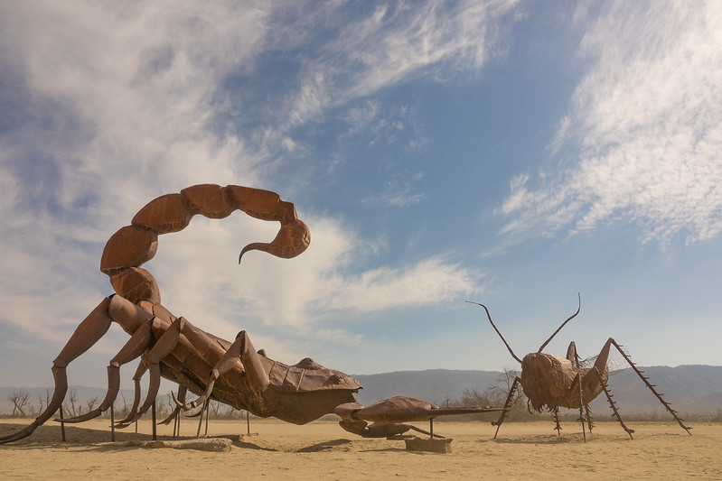 "FRIDAY, APRIL 28, 2017<br /> <br /> CALIFORNIA 03254<br /> <br /> ""Scorpion VS. Grasshopper""<br /> <br /> Call me odd, but I love the strangeness of the desert.  <br /> <br /> Anza-Borrego Desert State Park, California.<br /> <br /> Camera: Sony DSC-RX10M3<br /> Focal Length: 24mm<br /> Exposure Time: 1/1000<br /> Aperture: f/8<br /> ISO: 200"