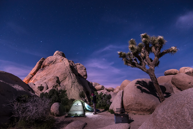 """WEDNESDAY, APRIL 19, 2017<br /> <br /> CALIFORNIA 2498<br /> <br /> """"Camping under the desert moonlight""""<br /> <br /> Joshua Tree National Park is such a beautiful place, perhaps even more so at night.  We had the coolest campsite at Belle Campground, nestled in between the rocks with a Joshua Tree watching over and Orion shining brightly overhead.  The moonlight cast a magical glow on the rocks all around us and the stillness of the desert at night is something that always amazes me.  It has an ominous quiet unlike anything I've heard before.  I love it.<br /> <br /> Camera: Nikon D750<br /> Lens: Nikon 16-35mm f/4<br /> Focal Length: 16mm<br /> Exposure Time: 6 seconds<br /> Aperture: f/4<br /> ISO: 1600"""