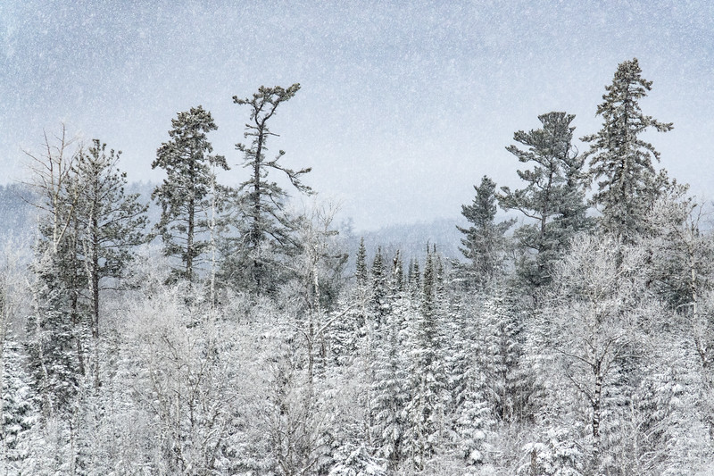 """Snowing on the Gunflint"""