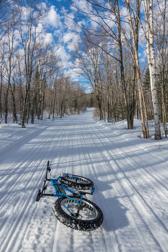 "SATURDAY, FEBRUARY 25, 2017<br /> <br /> BIKING 00900<br /> <br /> ""What a great day for a ride!""<br /> <br /> Longing for another day like this... one of the best winter biking days I've experienced.  This was during last week's warm spell.  The temp was about 40 degrees, the trail was nice and firm and the sky was beautiful!<br /> <br /> Camera: Sony DSC-RX10M3<br /> Focal Length: 24mm<br /> Exposure Time: 1/800<br /> Aperture: f/5.6<br /> ISO: 200"