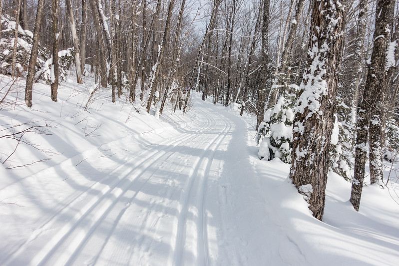 "TUESDAY, JANUARY 3, 2017<br /> <br /> CROSS COUNTRY SKI 04736<br /> <br /> ""Cross Country Heaven""<br /> <br /> A little New Year's Day ski trail beauty for you coming from the Deer Yard Ski Trails in Cook County, Minnesota!  It sure was a pretty day to be out on the skis and I found this trail to be super photogenic.  It has so many curves that lend themselves nicely to an inviting photo composition.  What a great way to start the new year!<br /> <br /> Camera: Sony DSC-RX100M3<br /> Focal Length: 24mm<br /> Exposure Time: 1/1000<br /> Aperture: f/4<br /> ISO: 200"