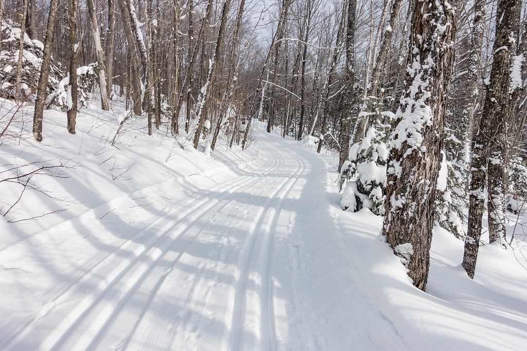 """TUESDAY, JANUARY 3, 2017<br /> <br /> CROSS COUNTRY SKI 04736<br /> <br /> """"Cross Country Heaven""""<br /> <br /> A little New Year's Day ski trail beauty for you coming from the Deer Yard Ski Trails in Cook County, Minnesota!  It sure was a pretty day to be out on the skis and I found this trail to be super photogenic.  It has so many curves that lend themselves nicely to an inviting photo composition.  What a great way to start the new year!<br /> <br /> Camera: Sony DSC-RX100M3<br /> Focal Length: 24mm<br /> Exposure Time: 1/1000<br /> Aperture: f/4<br /> ISO: 200"""