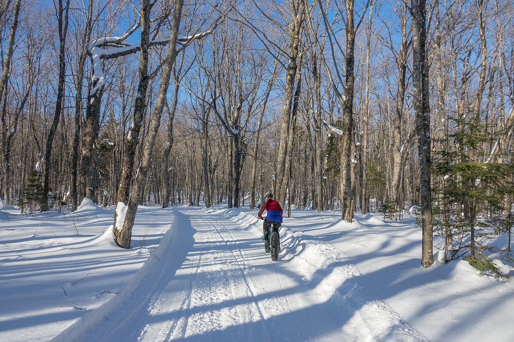 """THURSDAY, JANUARY 19, 2017<br /> <br /> BIKING 00041<br /> <br /> """"Riding through the Sugar Bush""""<br /> <br /> Just another great day in the woods on the bike!  Enjoying a cruise through the maple forest in Grand Portage, MN.  Nothing much better than winter fun :-)<br /> <br /> Camera: Sony DSC-RX10M3<br /> Focal Length: 24mm<br /> Exposure Time: 1/1250<br /> Aperture: f/4<br /> ISO: 200"""