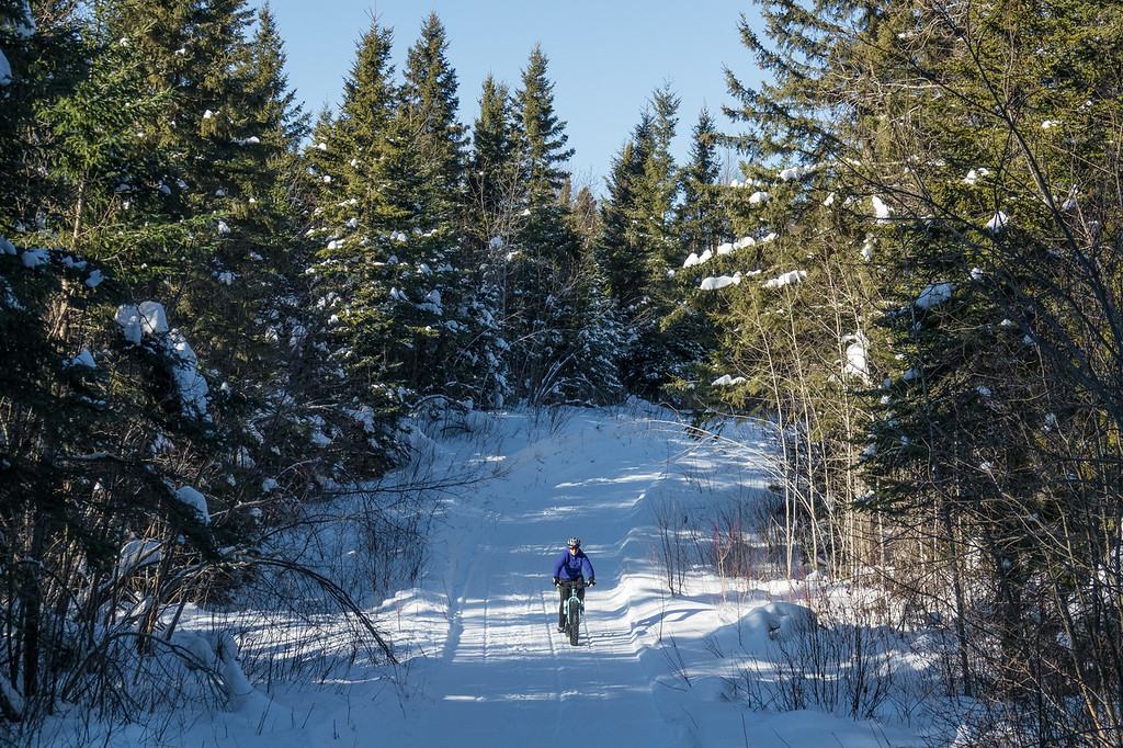 """WEDNESDAY, JANUARY 18, 2017<br /> <br /> BIKING 00021<br /> <br /> """"Cruising through the forest""""<br /> <br /> A fun fat bike ride on a beautiful January afternoon at the """"Tip of the Arrowhead"""" region in Grand Portage, MN.<br /> <br /> Camera: Sony DSC-RX10M3<br /> Focal Length: 72mm<br /> Exposure Time: 1/2000<br /> Aperture: f/4<br /> ISO: 400"""