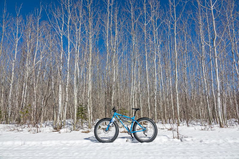 "THURSDAY, MARCH 23, 2017<br /> <br /> BIKING 01863<br /> <br /> ""Ice Cream Truck and Aspens""<br /> <br /> Awesome adventure on the bike yesterday! Beautiful blue sky day with mild temperatures and our hard crusty snow conditions still exist (meaning you can still bike pretty much wherever you want to). I chose a route that included a little bit of trail riding but was mostly through a random collection of logging cuts, across beaver marshes and down a section of the Pigeon River. I sure am going to miss these conditions when they're gone!<br /> <br /> Camera: Sony DSC-RX10M3<br /> Focal Length: 24mm<br /> Exposure Time: 1/2000<br /> Aperture: f/5.6<br /> ISO: 200"