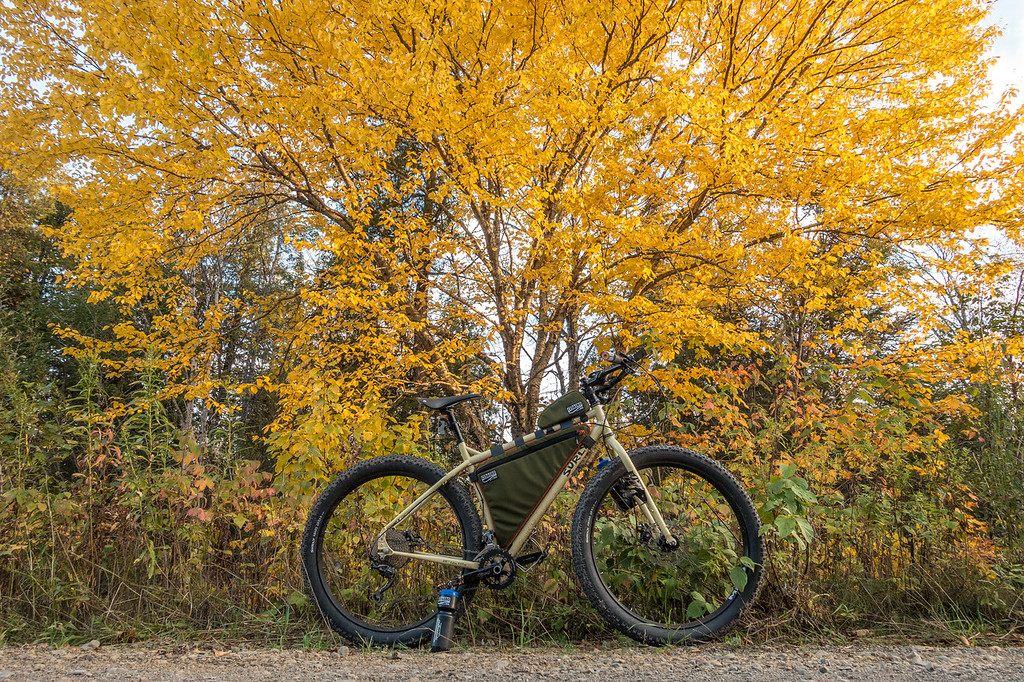 """THURSDAY, OCTOBER 5, 2017<br /> <br /> BIKING 06761<br /> <br /> """"Autumn ECR""""<br /> <br /> Beautiful ride under the forest canopy this evening.<br /> <br /> Camera: Sony DSC-RX100M3<br /> Focal Length: 24mm<br /> Exposure Time: 1/80<br /> Aperture: f/4<br /> ISO: 200"""