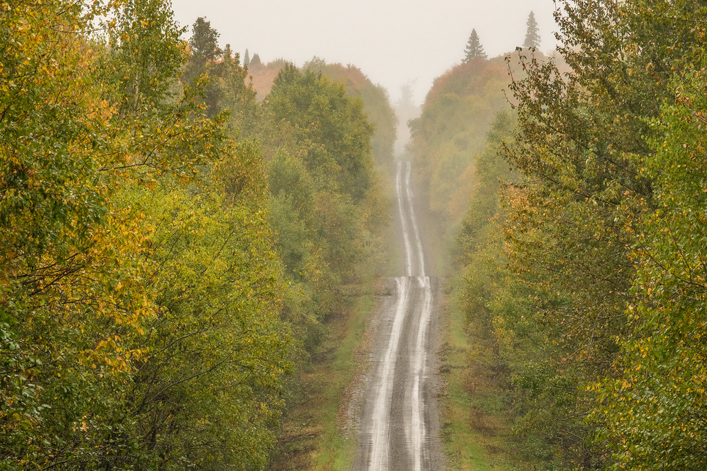 "WEDNESDAY, SEPTEMBER 27, 2017<br /> <br /> FOREST 06100<br /> <br /> ""Jackson Lake Road on a Rainy Day""<br /> <br /> Yesterday was a very wet day.  According to my rain gauge we received a full inch of rain throughout the day.  This is on top of what has already been a wet week.  I figured it was a good day to go for a drive in the woods.  Along the way I captured a couple of interesting ""road view"" photographs.  The first photo is Jackson Lake Road in Grand Portage State Forest and the second photo is Rengo Road on the Grand Portage Reservation.  Two of my favorite biking roads although I was glad to not be biking them yesterday as the rain made them pretty muddy!<br /> <br /> Camera: Sony DSC-RX10M3<br /> Focal Length: 266mm<br /> Exposure Time: 1/100<br /> Aperture: f/8<br /> ISO: 400"