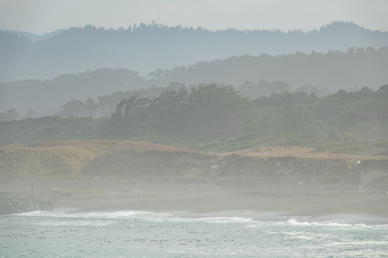 """TUESDAY, SEPTEMBER 26, 2017<br /> <br /> CALIFORNIA 05526<br /> <br /> """"Morning Fog on the California Coast""""<br /> <br /> A beautiful morning on the coastline of MacKerricher State Park in Fort Bragg, California.  The coast was foggy but just half a mile inland the sun was shining.  By early afternoon the fog had completely dissipated and the sun was shining brightly on the beaches.  <br /> <br /> Camera: Sony DSC-RX10M3<br /> Focal Length: 289mm<br /> Exposure Time: 1/1250<br /> Aperture: f/5.6<br /> ISO: 200"""