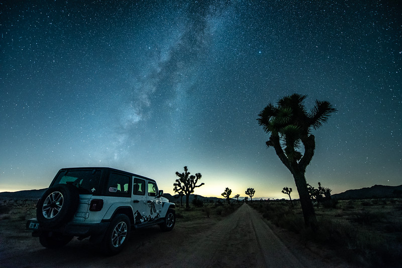"""Joshua Tree Nights"""
