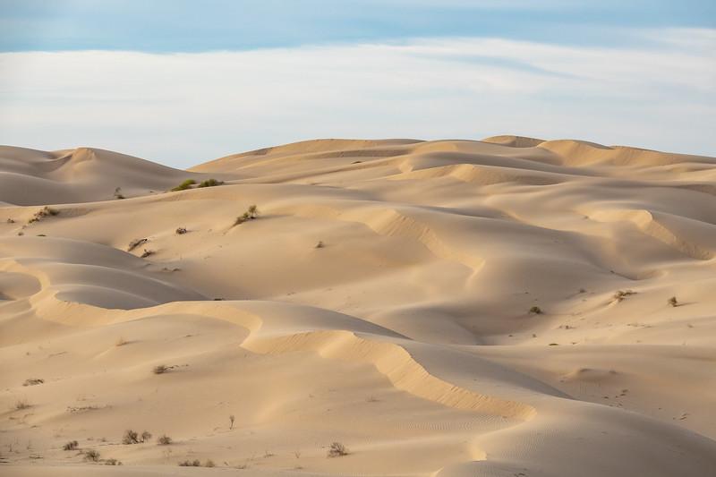 """""""Imperial Dunes (Glamis)"""""""