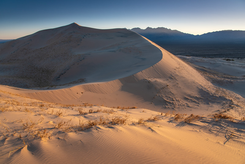 """Early morning light on the Kelso Dunes"""