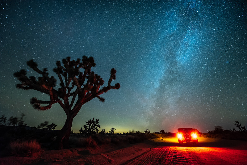 """Mojave Nights"""