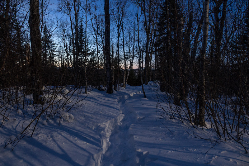 """Dusk and moonlight on snowshoe trail"""