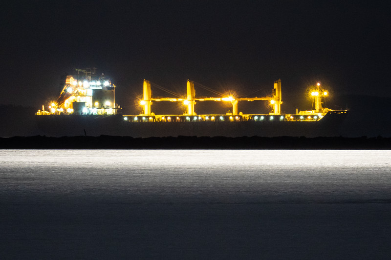 """Bulk Carrier 'Olza' in moonlight, Thunder Bay harbour"""