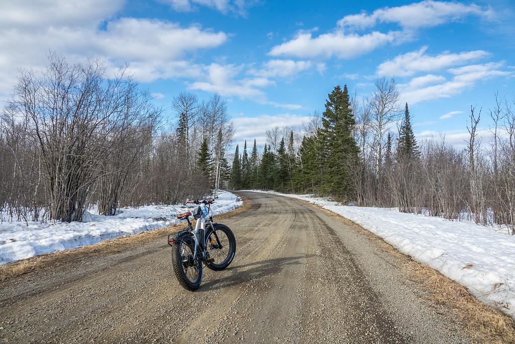 """""""Spring Biking"""""""