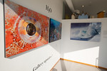 "Aluminum prints by Eric Cheng at ""H20"", street window of The G2 Gallery"