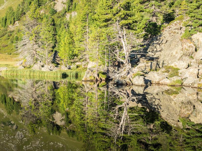 Windebensee - reflections