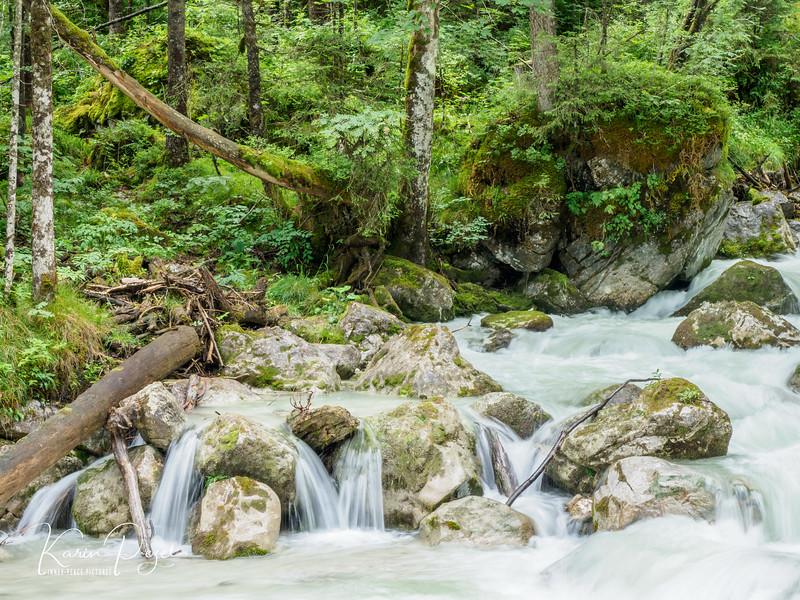 Zauberwald (bei Ramsau)