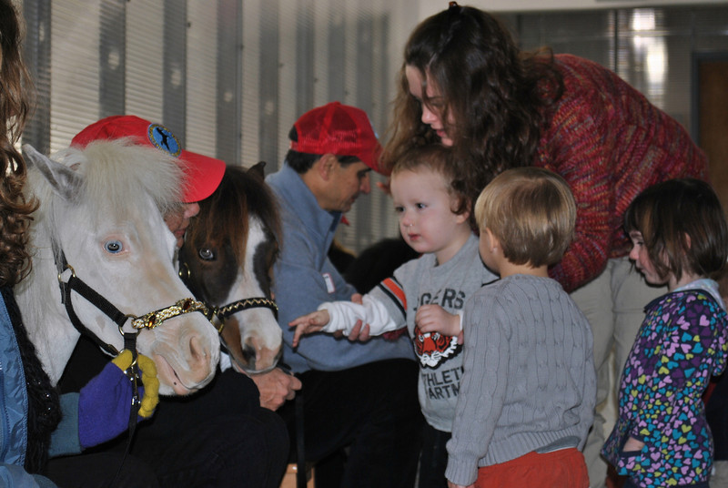Fraser Woods School assistant preschool teacher Cynthia Wilson guides student Alex Gadbut as he pets Aladdin and Wakanda, two miniature therapy horses, during a special presentation at the school on Thursday, January 3. Classmates Logan Mengold and Pearson Previdi look on. (Crevier photo)
