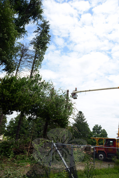 Erik Barrett of Timber Ridge Tree Service cuts away the top half of a spruce during tree removal at Fairfield Hills Wednesday. The crew is clearing an area to make room for the new ambulance garage construction. At that moment parallel with the ground, the treetop sails past his bucket as it falls to the ground. (Bobowick photo)