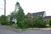 20110828_Hurricane_Tree_Damage_066_out