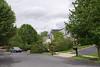 20110828_Hurricane_Tree_Damage_048_out