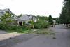 20110828_Hurricane_Tree_Damage_061_out