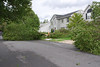 20110828_Hurricane_Tree_Damage_036_out