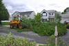 20110828_Hurricane_Tree_Damage_053_out